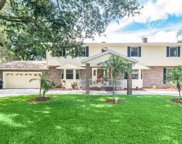 15906 Dover Cliffe Drive, Lutz image