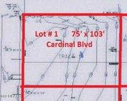 S Cardinal Boulevard, Daytona Beach Shores image