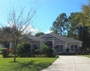 2055 Dobson Street, Clermont image