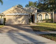 9950 Shadow Creek Drive, Orlando image