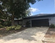 2448 Grove Ridge Drive, Palm Harbor image