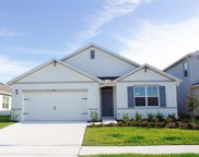 6738 Coral Berry Drive, Mount Dora image