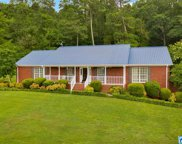 4367 Co Rd 39, Oneonta image