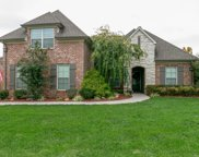 1043 Cantwell Pl, Spring Hill image