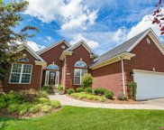 4110 Stone Lakes Dr, Louisville image