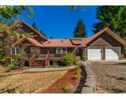 94251 TEMPLETON  RD, Junction City image