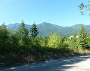 23 LOT NE Money Creek Rd, Skykomish image