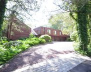 6 Willow Pond Rd, Woodbury image