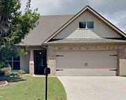 520 Village Springs Lane, Springville image