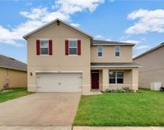 16224 Yelloweyed Drive, Clermont image