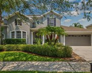 16172 Colchester Palms Drive, Tampa image