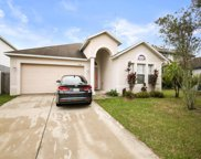 10436 Fly Fishing Street, Riverview image