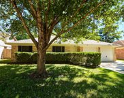23110 Earlmist Drive, Spring image