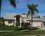 1089 Clippers Way, Tarpon Springs image