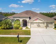 10128 Queens Park Drive, Tampa image