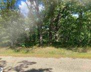 Many Oaks Drive, Interlochen image