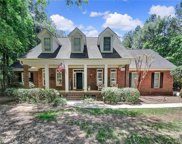 409 White Chappel  Court, Fort Mill image