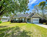 107 Old Hall Road, Irmo image