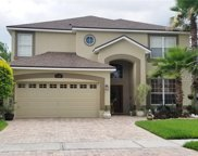 13387 Early Frost Circle, Orlando image