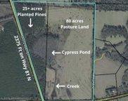 110 Acres Hwy 81 N, Westville image