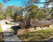 16822 Apache Dr, Greenwell Springs image