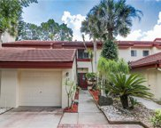 3460 Countryside Boulevard Unit 13, Clearwater image