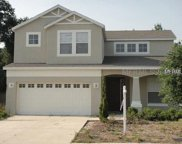 3185 Oak Brook Lane, Eustis image