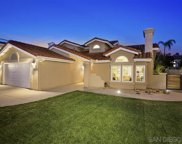1394 Bonnie Bluff Cir, Encinitas image