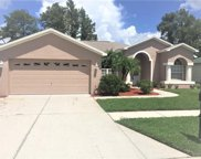 8131 Baytree Drive, New Port Richey image