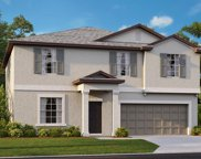 13648 Wild Ginger Street, Riverview image