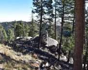 13633 Spruce Creek Circle, Larkspur image