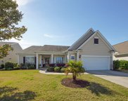 374 Waterlily Way, Summerville image