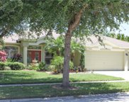 7312 Carrington Oaks Lane, Apollo Beach image