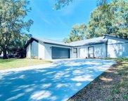 3203 Taragrove Drive, Tampa image