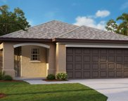 13332 Willow Bluestar Loop, Riverview image