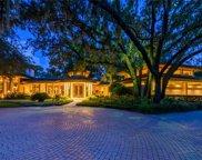 10000 Lindelaan Drive, Tampa image