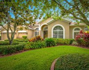 10312 Greenhedges Drive, Tampa image