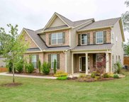 128 Sapphire Pointe Drive, Duncan image