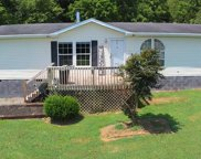 2225 Bales Rd, Knoxville image