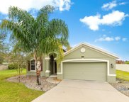 12509 Hammock Pointe Circle, Clermont image