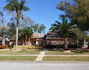 3411 Beech Trail, Clearwater image