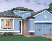 13318 Blossom Valley Drive, Clermont image