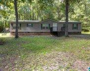 78 Birch Tree Road, Hayden image