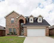 8529 Western Meadows Drive, Fort Worth image