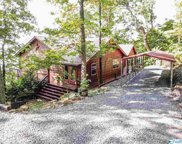 1577 County Road 224, Dutton image
