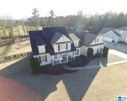 540 Branch Cove, Odenville image