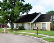 9918 Early Spring Drive, Houston image