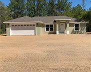 1609 W Cary Drive, Dunnellon image
