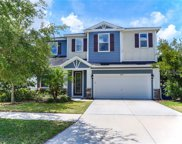 11507 Balintore Drive, Riverview image