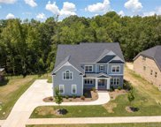 438 Knotgrass  Drive, Fort Mill image